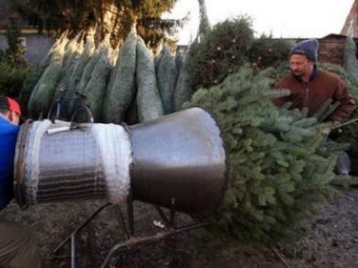 Egy kis karácsonyfa-történelem 2018. december 02. vasárnap - 10:45 PP-Eletforma Tudod, mi okból állítunk december végén fenyőfát a nappaliban? És hogy miért pont fenyőt, és hogy egyáltalán, mióta él ez a szokás? Ha a karácsonyi rohanásban egy pillanatra már eltűnődtél ezeken a kérdéseken, de a válaszokat nem ismered, akkor most Megyeri Szabolcs kertészmérnök megpróbál segíteni, és így talán a karácsony mára kissé kiüresedett hagyománya is több értelmet nyerhet. Kezdjük az ünneplést!