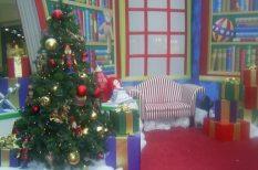 család, fenyőfa, karácsony, szokások, történelem, ünnep
