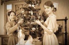 divat, fenyő, karácsonyfa, kertészmérnök, Megyeri Szabolcs, történelem, ünnep