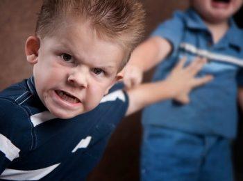 agresszivitás, család, gyerek, közösség, önvédelem, viselkedés