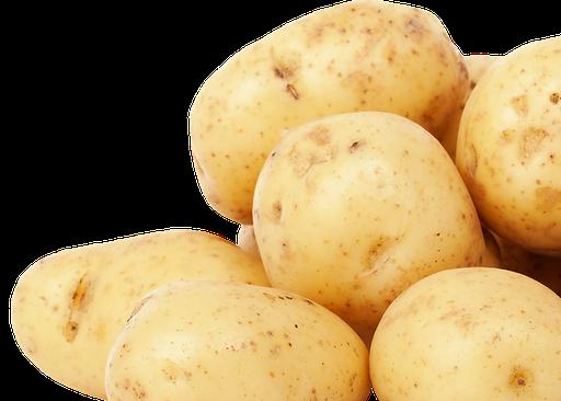 Burgonya, semleges, Kép: pixabay