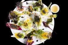 Enrico Crippa, étteremkalauz, gasztronómia, önbecsülés, paprika, tesztelés, TO100, Volkswagen-Dining Guide