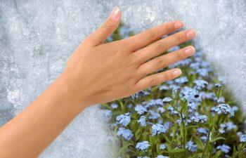 évszakváltás, folyadék, gyógytea, immunrendszer, influenza, tavasz