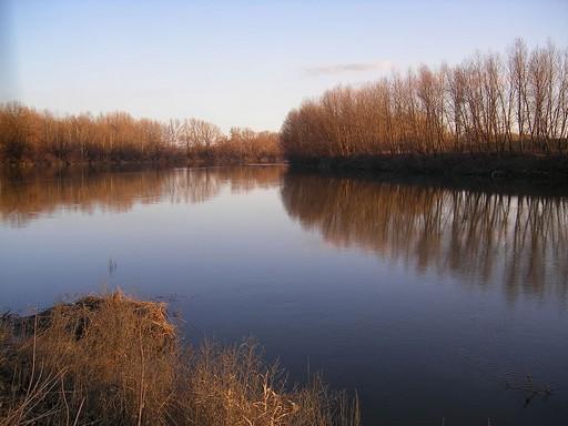 Kis-Duna, Kép: Wikipedia
