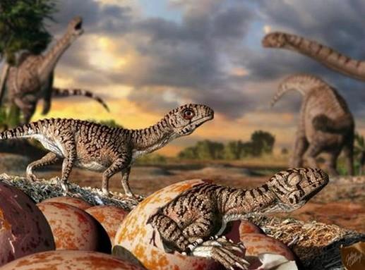 Lufengosaurus-tojáshéjtöredékek, Kép Julius Csotonyi