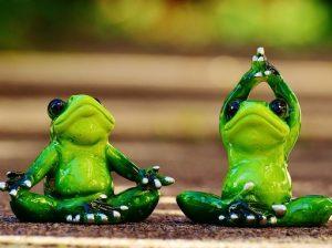 Békák tornáznak, jógáznak, Kép: pixabay