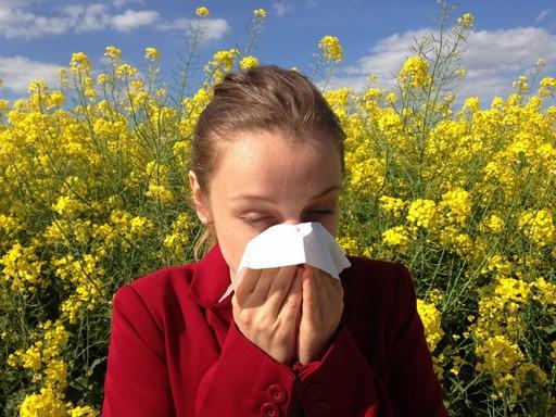 Lány tüsszög a virágok között, Kép: Budai Allergénközpont