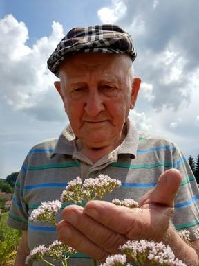 Gyuri bácsi macskagyökérrel, Kép: gyorgytea.hu