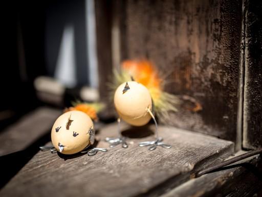 Húvéti topjáscsibék, Kép: sajtóanyag