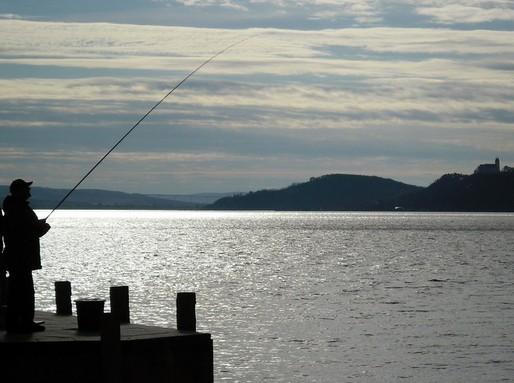 Balatoni horgász, Kép: pixabay