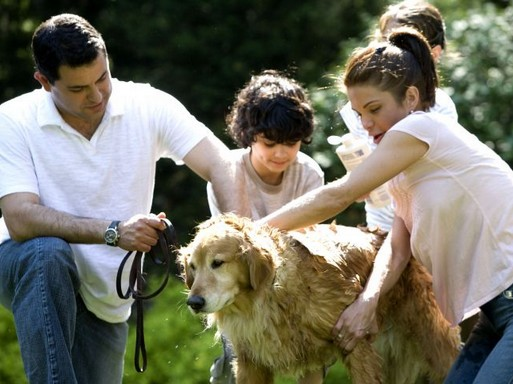 Család, kutya, kirándulás, Kép: pixnio