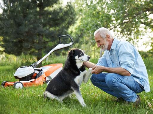 Besenyei Péter és kutyája, háttérben fűnyíró, Kép: stihl