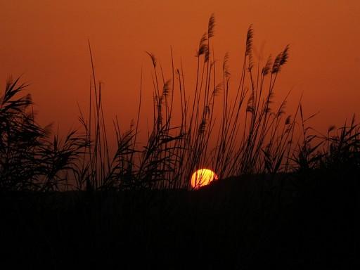 Napfelkelte a Balatonnál, Kép: pixabay