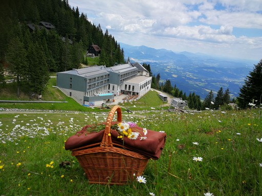 Vár Szlovénia, Kép: golte