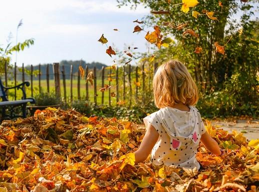 Kislány őszi levelekkel, Kép: pixabay