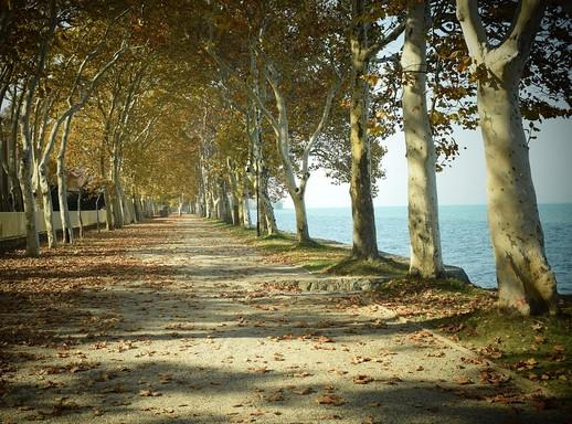 Őszii Balaton, Kép: pixabay