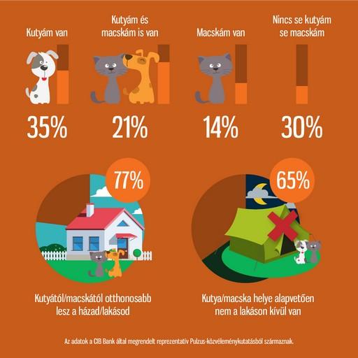 CIB40 infografika, Kép: cib